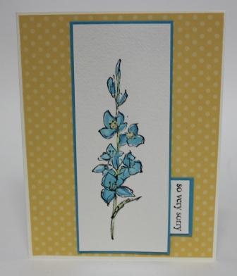 Cards1911 008