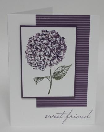 Cards22411 049