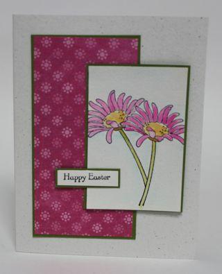 Cards32111 048